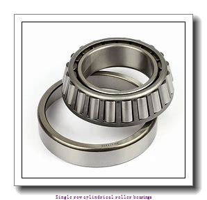 50 mm x 110 mm x 40 mm  NTN NJ2310EG1C3 Single row cylindrical roller bearings