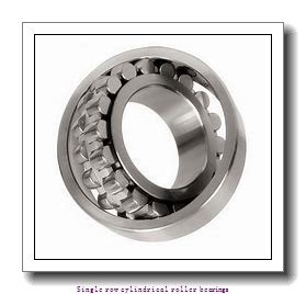60 mm x 130 mm x 46 mm  NTN NJ2312EG1C5NA Single row cylindrical roller bearings