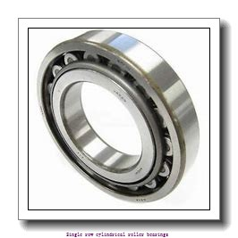 100 mm x 215 mm x 47 mm  NTN NJ320C4 Single row cylindrical roller bearings