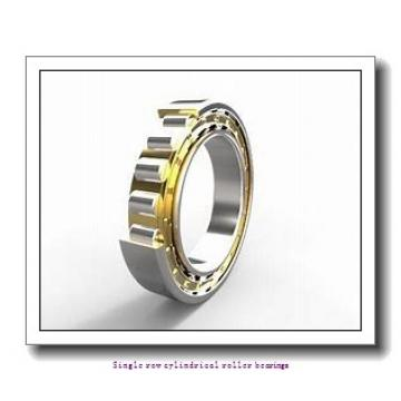 85 mm x 180 mm x 60 mm  NTN NJ2317EG1C3 Single row cylindrical roller bearings
