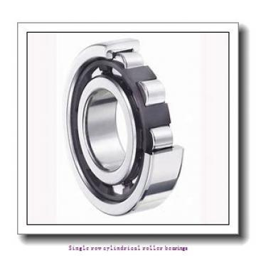 85 mm x 180 mm x 41 mm  NTN NJ317 Single row cylindrical roller bearings