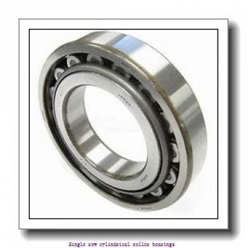 80 mm x 170 mm x 58 mm  NTN NJ2316C4 Single row cylindrical roller bearings