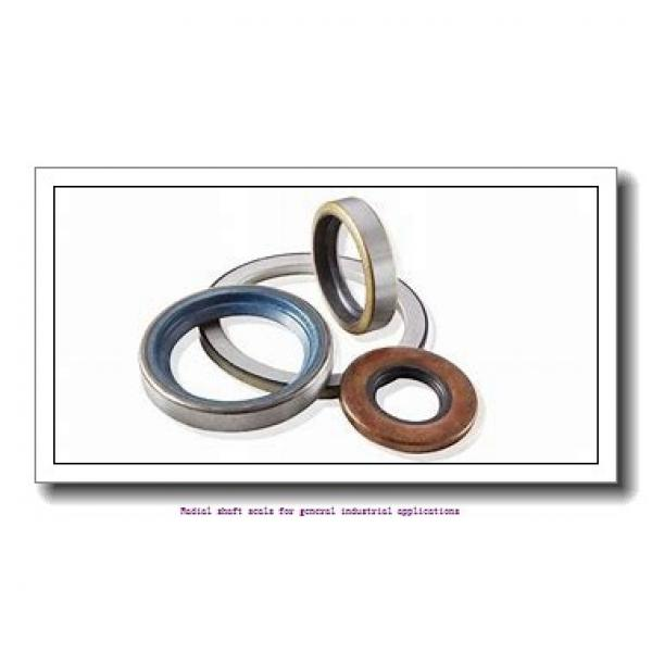 skf 12483 Radial shaft seals for general industrial applications #2 image
