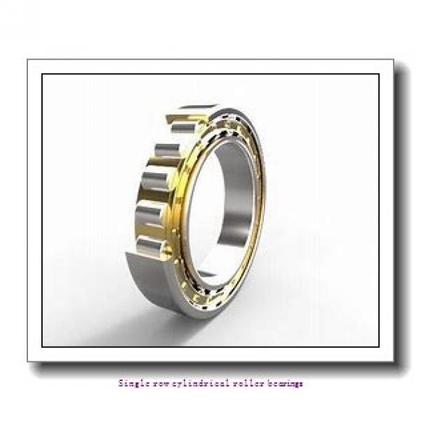 85 mm x 180 mm x 60 mm  NTN NJ2317EG1C3 Single row cylindrical roller bearings #1 image
